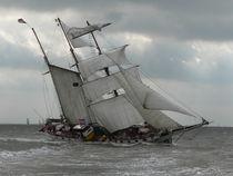 Sturm von Rolf Müller