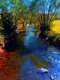 Bunter Fluss im Herbst von Patrick Jobst