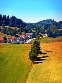 Ein Dorf, Bäume und etwas langweilige Gegend von Patrick Jobst
