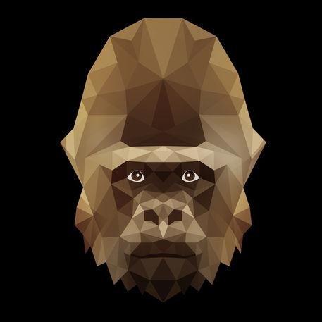 Gorilla-6500