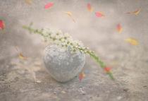 Herbstliebe / 1 by Heidi Bollich