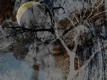 'Magischer Wald - magic Forest' von Chris Berger