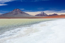 Desert lake Laguna Lejia, Altiplano, Chile on a sunny day by Sara Winter