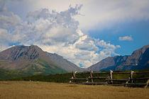 The Last Frontier-Alaska von Amber D Hathaway Photography