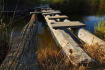 Improvised Wooden Bridge von Angelo DeVal