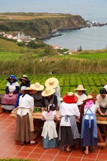 Porto Formoso tea factory by Gaspar Avila