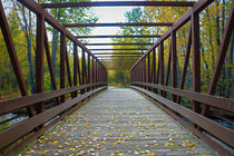 Cross that Bridge  by Amber D Hathaway Photography