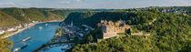 St. Goar mit Festung Rheinfels (12.4) von Erhard Hess