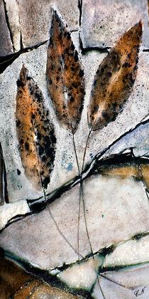 Herbst - Blätter auf Stein von Chris Berger