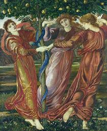 Garden of the Hesperides, 1869-73  von Sir Edward Burne-Jones