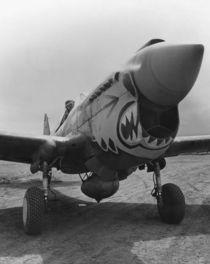 P-40 Warhawk  by warishellstore