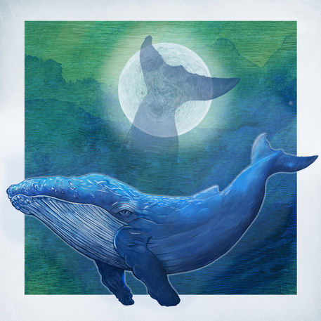 Blauwal-1-neu