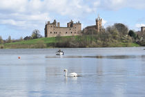 Linlithgow Palace and Loch by David Rankin