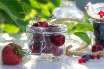 Frische Früchte Küchen Stillleben by Tanja Riedel
