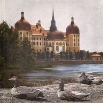 Die Gänse von Moritzburg von Chris Berger