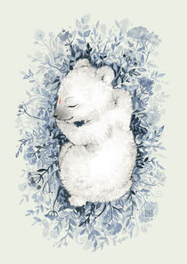 Polar Slumber by freeminds