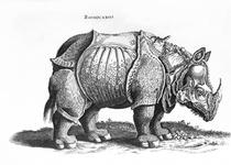 Rhinoceros von Albrecht Dürer
