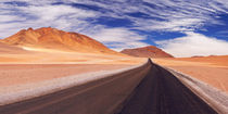 Desert road through the Altiplano, Chile, altitude 4700m von Sara Winter