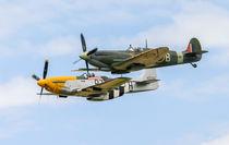 RAF Spitfire and USAF P51 Mustang von Chris Warham
