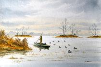 The Island Duck Blind von bill holkham