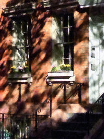 Window Boxes Greenwich Village by Susan Savad