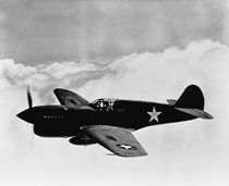 P-40 Warhawk von warishellstore