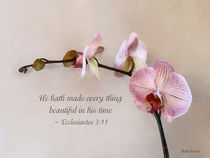 Ecc 3 11 He Hath Made Everything Beautiful II  by Susan Savad