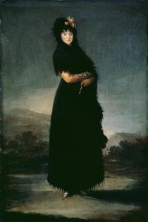 Mariana Waldstein  by Francisco Jose de Goya y Lucientes