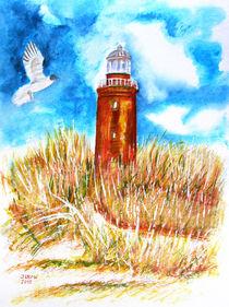 Leuchtturm am Ostsee von Irina Usova