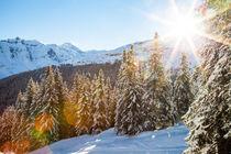 Wintersonne by Jan Schuler