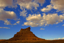 Monument Valley, Arizona USA von Brian  Leng