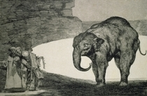 Folly of Beasts, from the Follies series, or Other Laws for the  von Francisco Jose de Goya y Lucientes