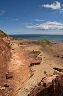 Exmouth near Orcombe Point von Pete Hemington