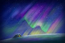 Polar lights by Diana Gavrylova