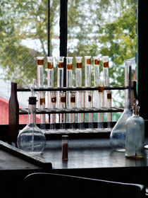 Test Tubes by Window by Susan Savad