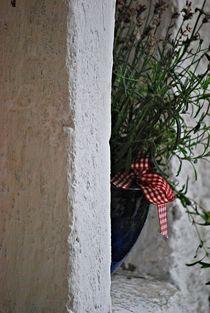 hidden places... von loewenherz-artwork
