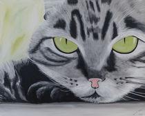 Katze by Daliah Sölkner