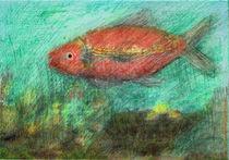 red fish von Do Behm