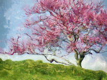 PINK FLOWERING TREE von Jean Gregory Evans