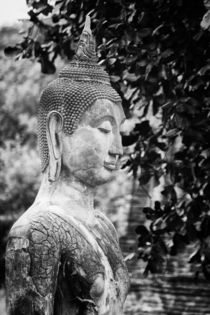 Budha by Jan Schuler