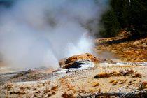 Die Hitze des Schwefel Geysir von ann-foto