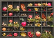 Herbstlicher Setzkasten by Heike  Langenkamp