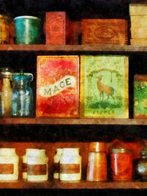 Spices on Shelf by Susan Savad