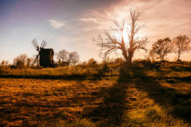 Windmill in the fields by David Pinzer