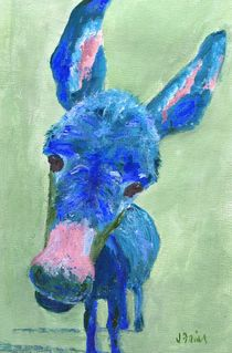 Wonkey-donkey