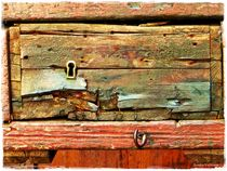 """ Obsolete Old wood "" by Sandra  Vollmann"