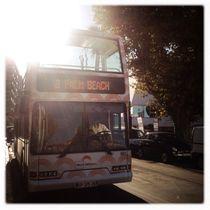 Palm Beach Bus by Maximilian Lips