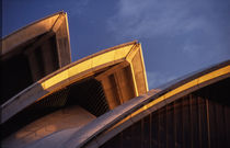 Sydney Opera House Detail by David Halperin