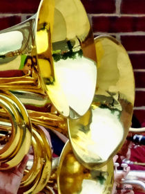 Baritone Horns by Susan Savad