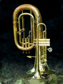 Trumpet and Tuba by Susan Savad